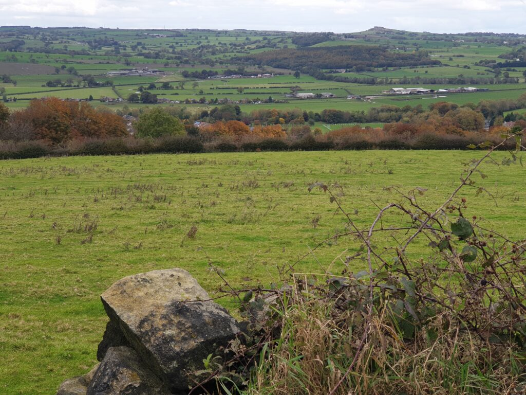 View From Pool Bank Farm
